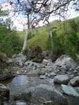 05-May Sunol Rock Scramble creek2.jpg
