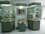09Aug21 Milos 10 Mining Museum display of mineral samples.JPG
