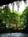 Highlight for Album: Around the Island of Kawaii