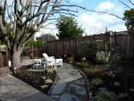 2011 Feb 16 San Ramon 01 backyard.JPG
