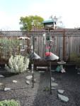 2011 Feb 16 San Ramon 02 backyard birdfeeders.JPG