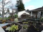2011 Feb 16 San Ramon 03 frontyard.JPG