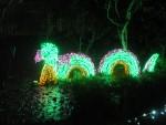 Highlight for Album: Garden d'Lights - November