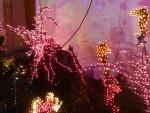 2012 Dec Garden d\'Lights 06 aquarium octopus