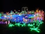 2012 Dec Garden d\'Lights 08 pond
