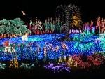 Highlight for Album: 2012 December Garden d'Lights