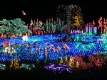 2012 Dec Garden d\'Lights 09 pond