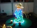 2012 Dec Garden d\'Lights 12 girl